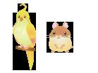 小鳥、ハムスター